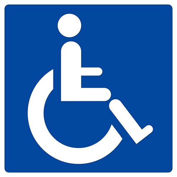 panneau handicap signaux instruction achatmat. Black Bedroom Furniture Sets. Home Design Ideas